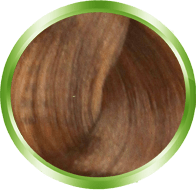 Lumea Color 8.37 - light blonde gold chestnut